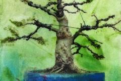w-blue-bonsai